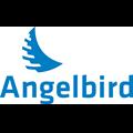 Hard Drives & Storage Angelbird